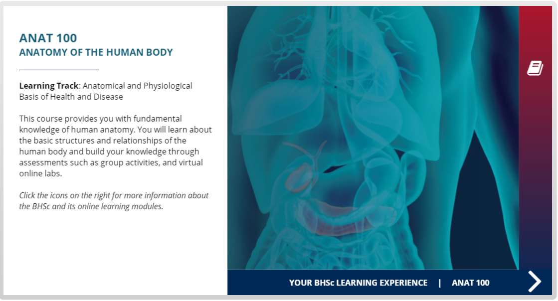 Explore ANAT 100 Anatomy of the Human Body